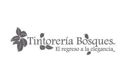 Tintoreria Bosques logo